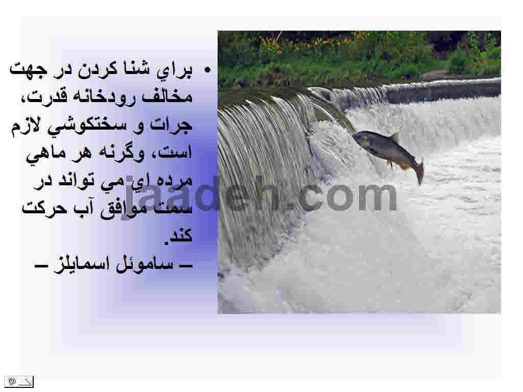 Image result for ‫جرات‬‎